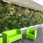 Jaké výhody má umělý trávník a vertikální zahrady