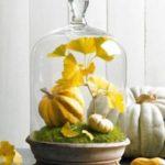 Podzimní dekorace inspirace (část 1)
