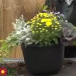 Jak udělat dekorativní podzimní květináč