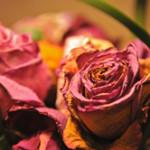 Jak udělat: Podzimní váza