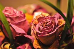 podzimní váza